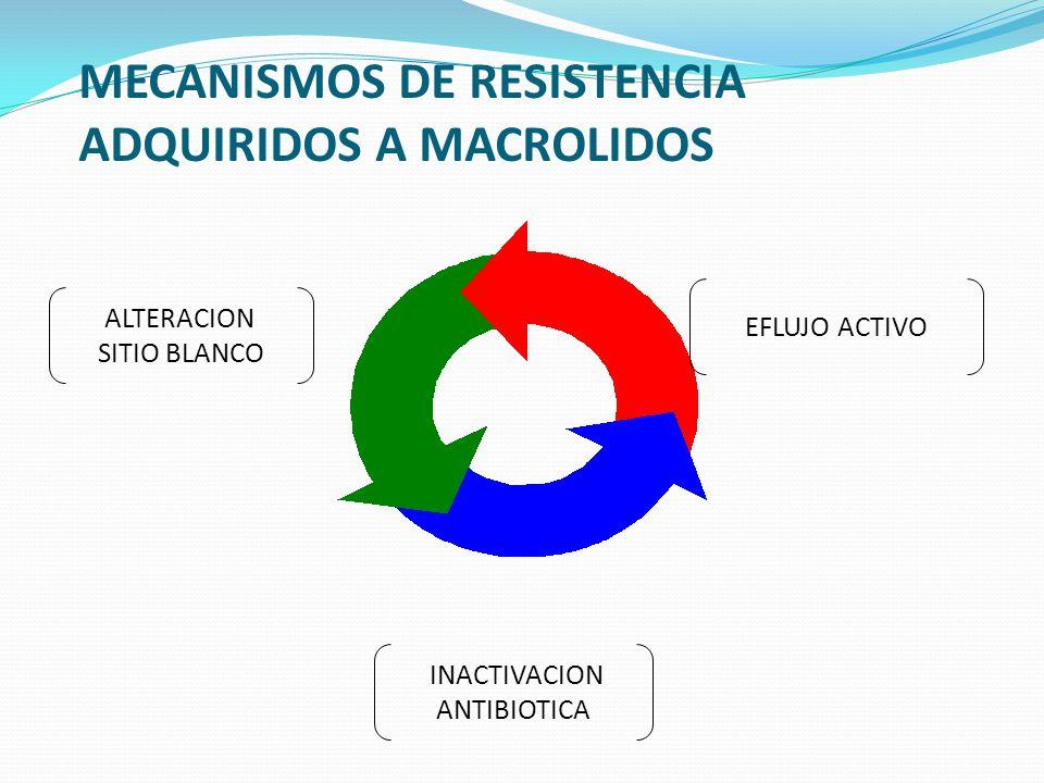 MECANISMOS DE RESISTENCIA ADQUIRIDOS A MACROLIDOS