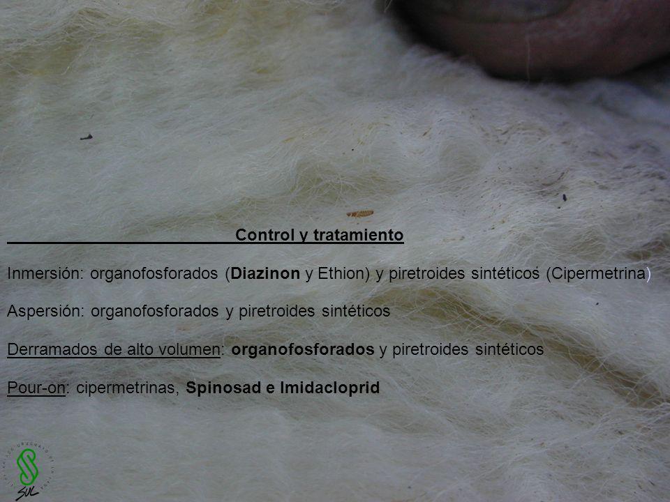 Control y tratamiento Inmersión: organofosforados (Diazinon y Ethion) y piretroides sintéticos (Cipermetrina)