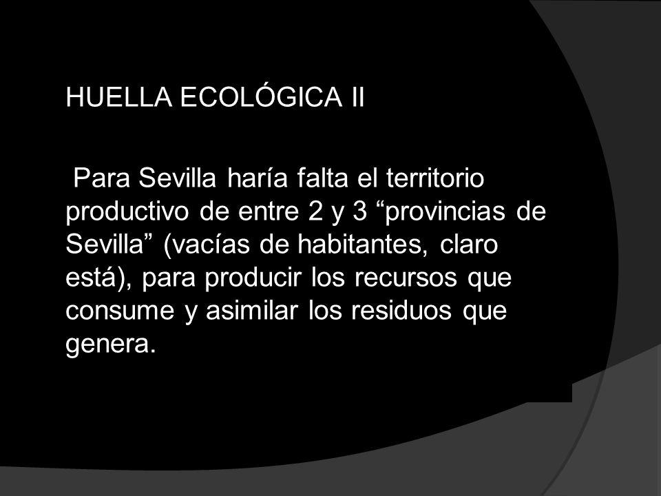 HUELLA ECOLÓGICA II