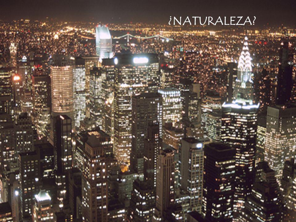 ¿NATURALEZA 6 ¿Cómo funciona, o no funciona, la ciudad