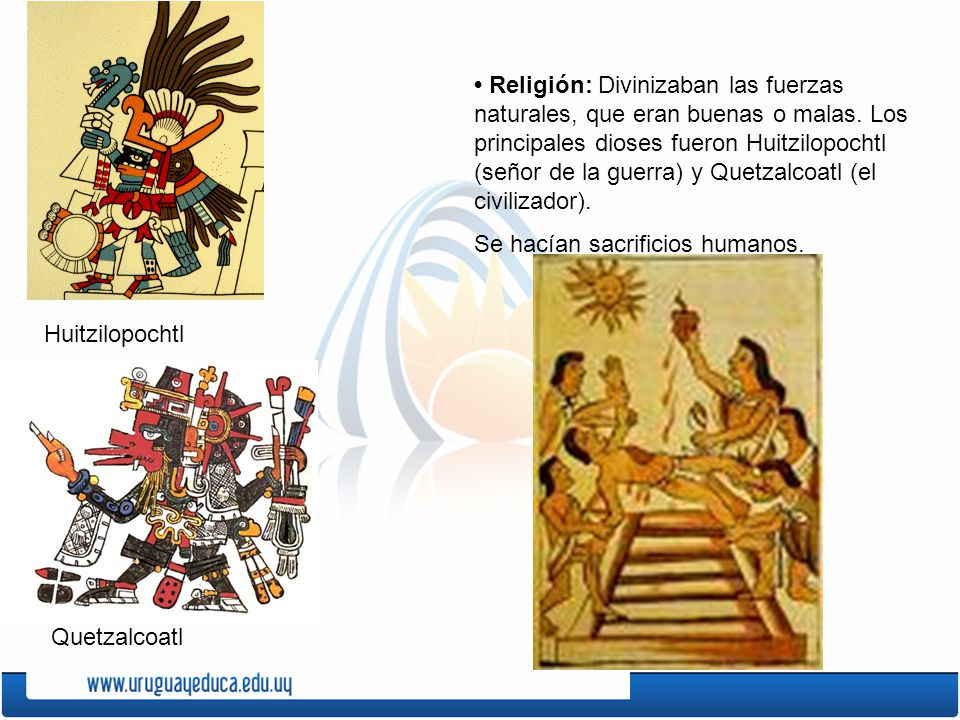 • Religión: Divinizaban las fuerzas naturales, que eran buenas o malas