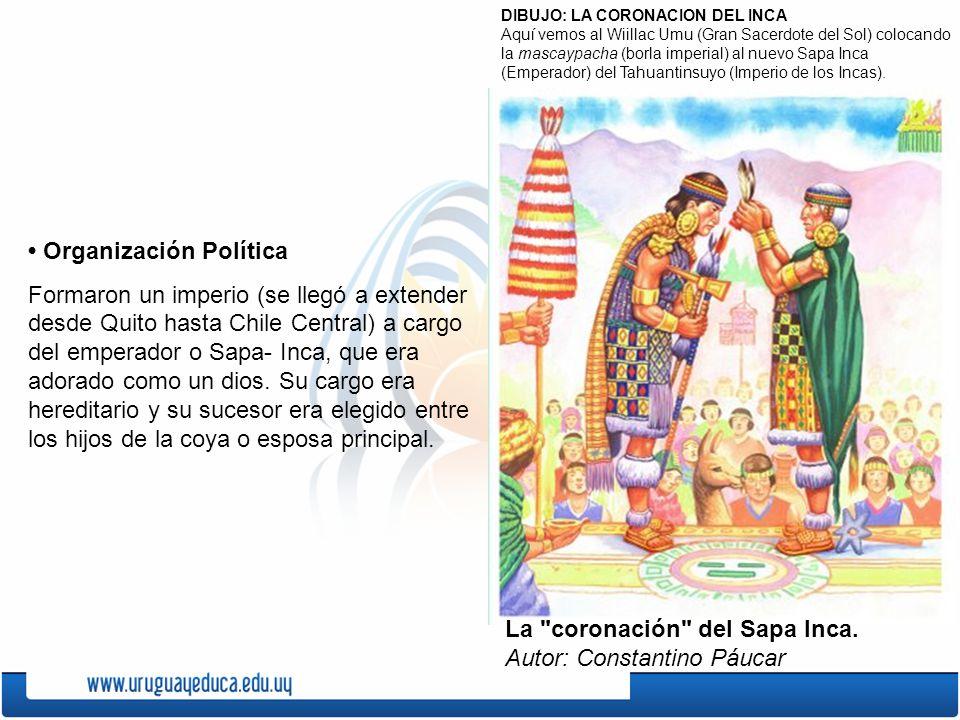 • Organización Política