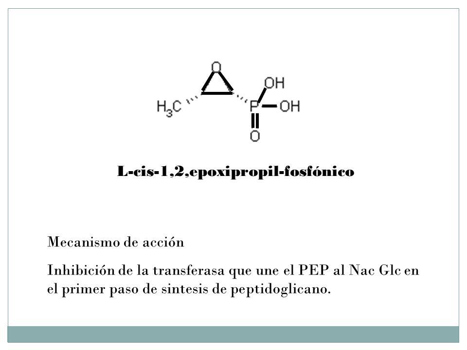 L-cis-1,2,epoxipropil-fosfónico