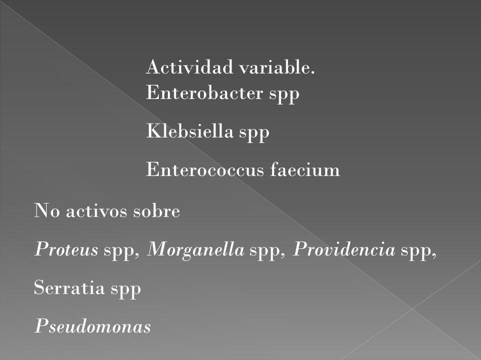 Actividad variable. Enterobacter spp