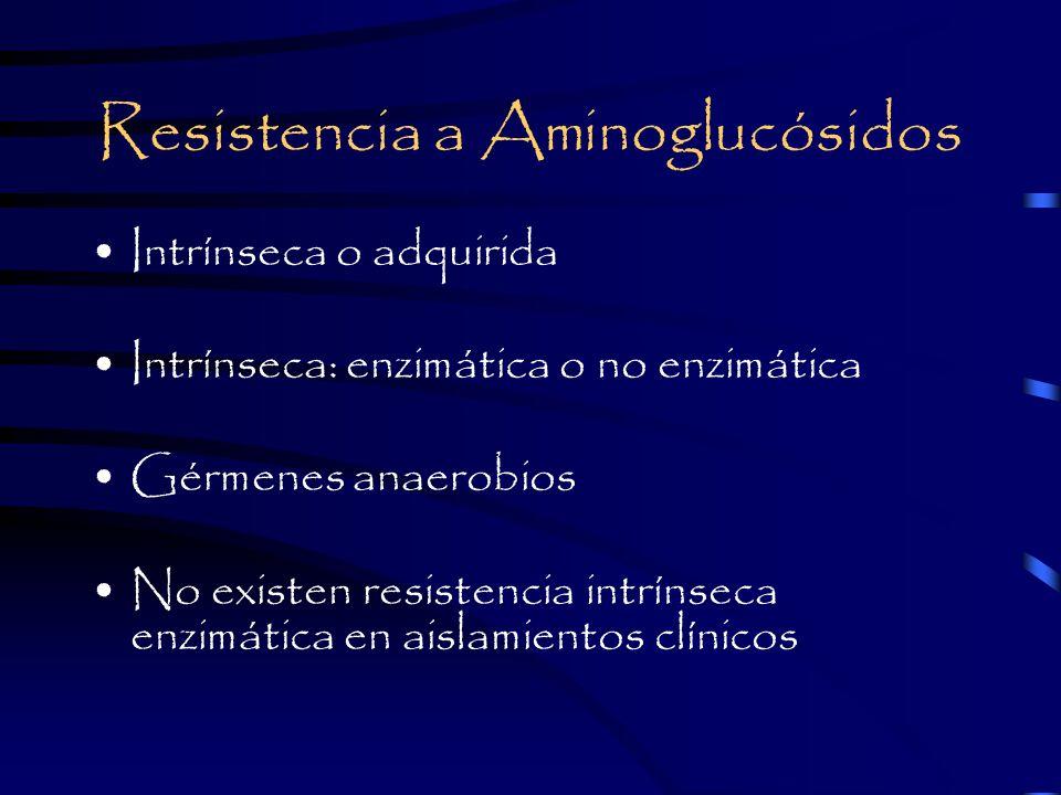 Resistencia a Aminoglucósidos