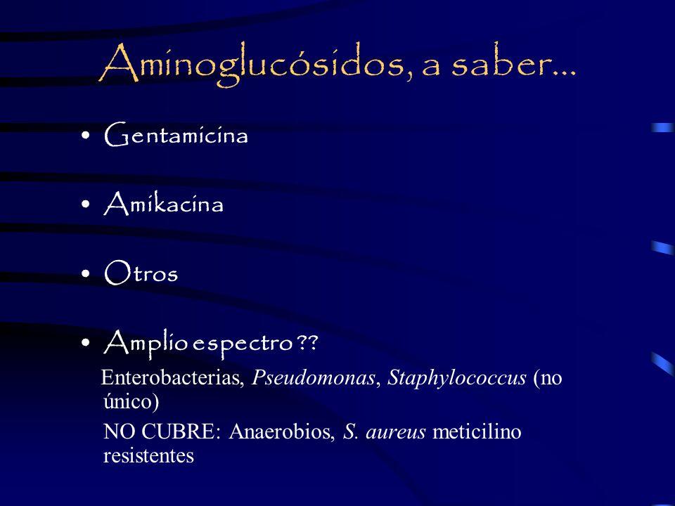 Aminoglucósidos, a saber…