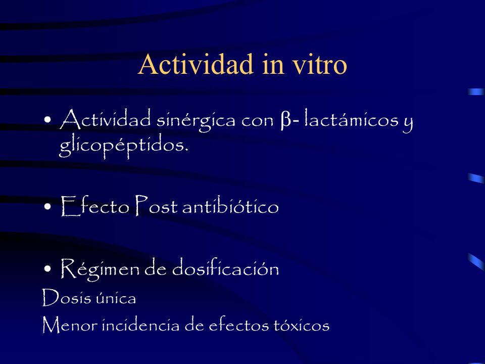 Actividad in vitro Actividad sinérgica con b- lactámicos y glicopéptidos. Efecto Post antibiótico.