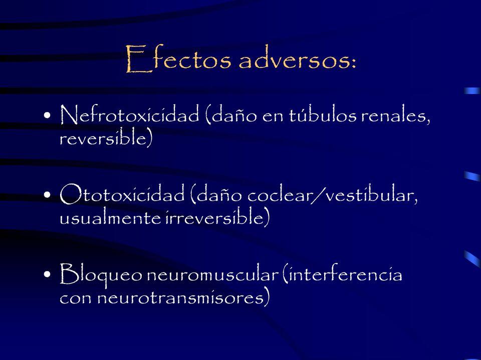 Efectos adversos: Nefrotoxicidad (daño en túbulos renales, reversible)