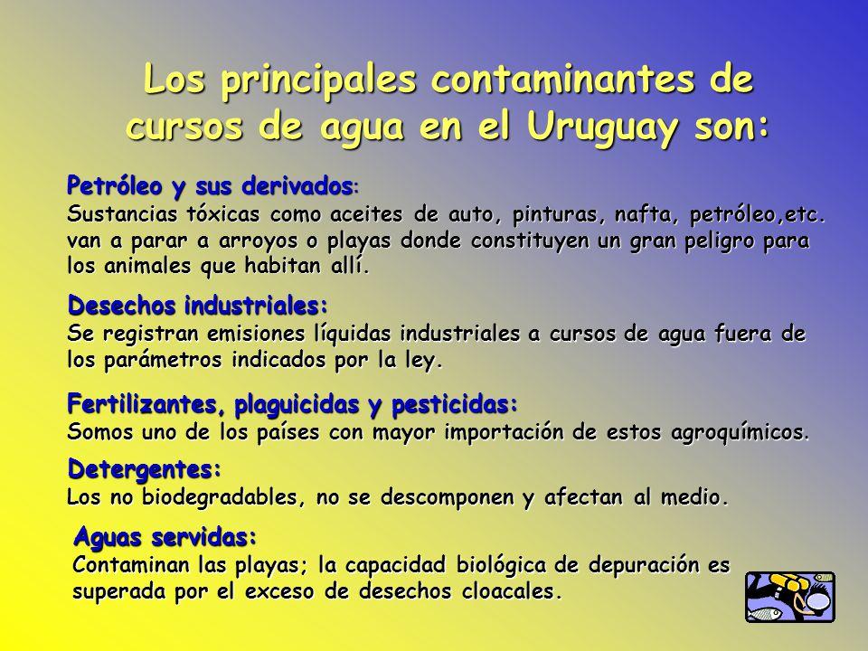 Los principales contaminantes de cursos de agua en el Uruguay son: