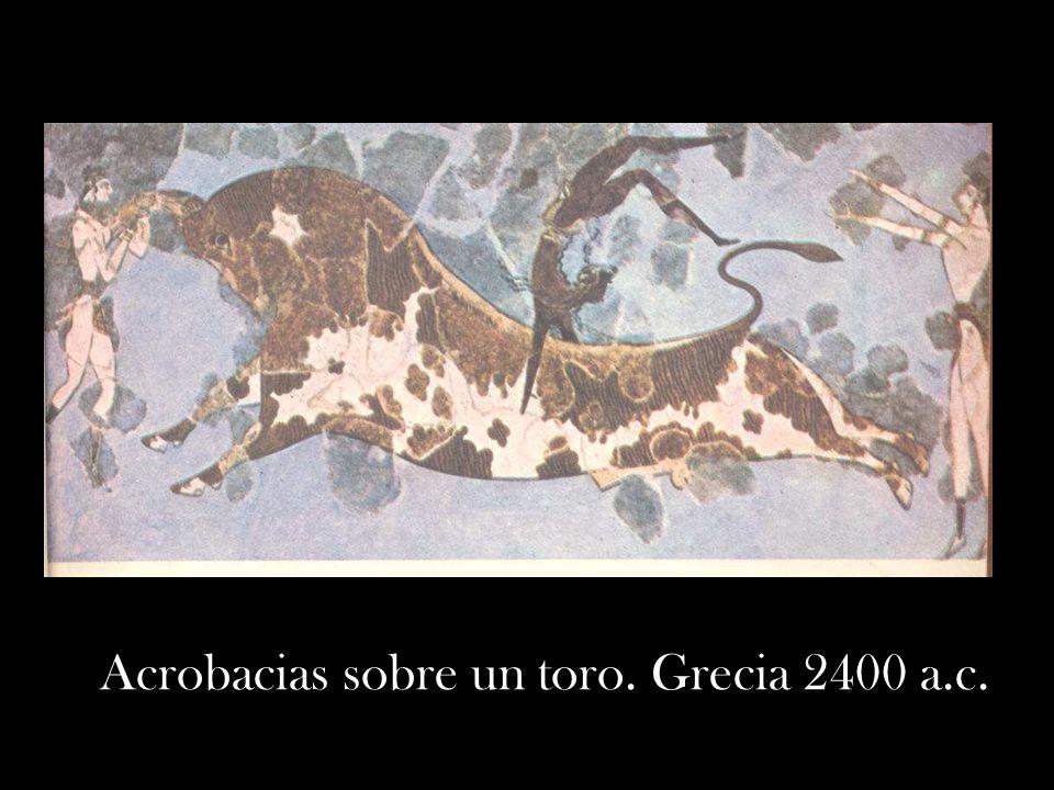 Acrobacias sobre un toro. Grecia 2400 a.c.
