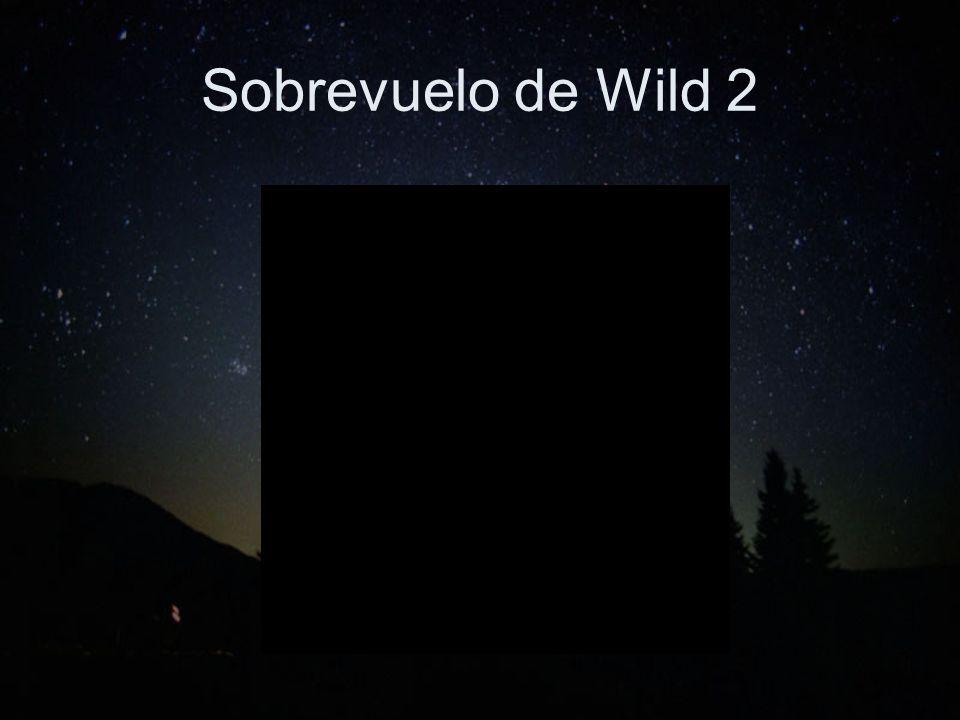 Sobrevuelo de Wild 2