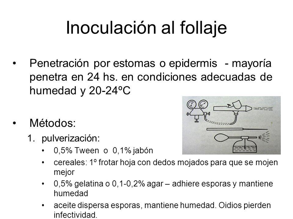 Inoculación al follaje