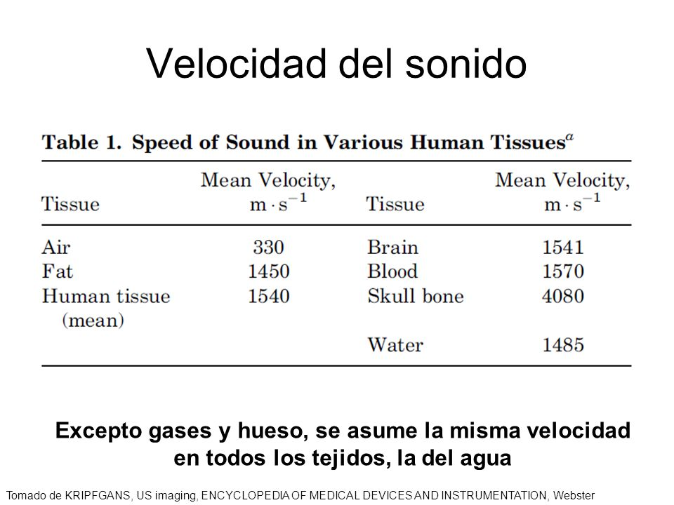 Velocidad del sonido Excepto gases y hueso, se asume la misma velocidad en todos los tejidos, la del agua.