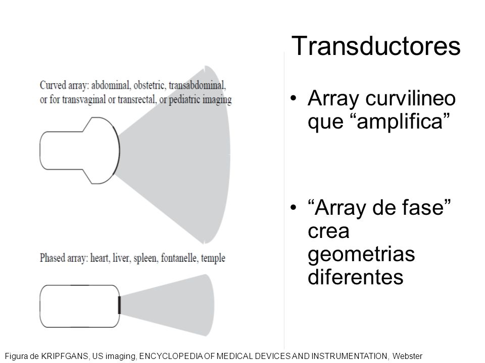 Transductores Array curvilineo que amplifica