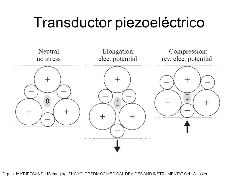 Transductor piezoeléctrico