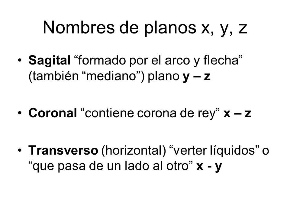 Nombres de planos x, y, z Sagital formado por el arco y flecha (también mediano ) plano y – z. Coronal contiene corona de rey x – z.