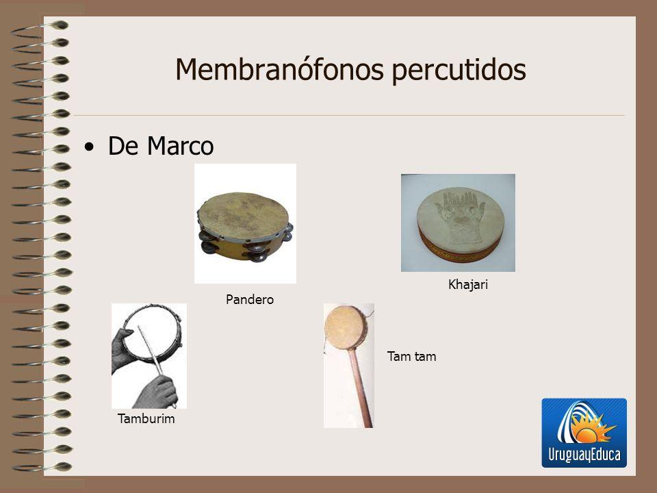 Membranófonos percutidos