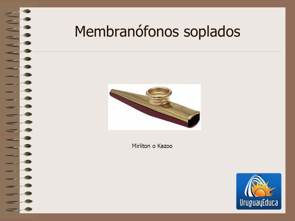 Membranófonos soplados