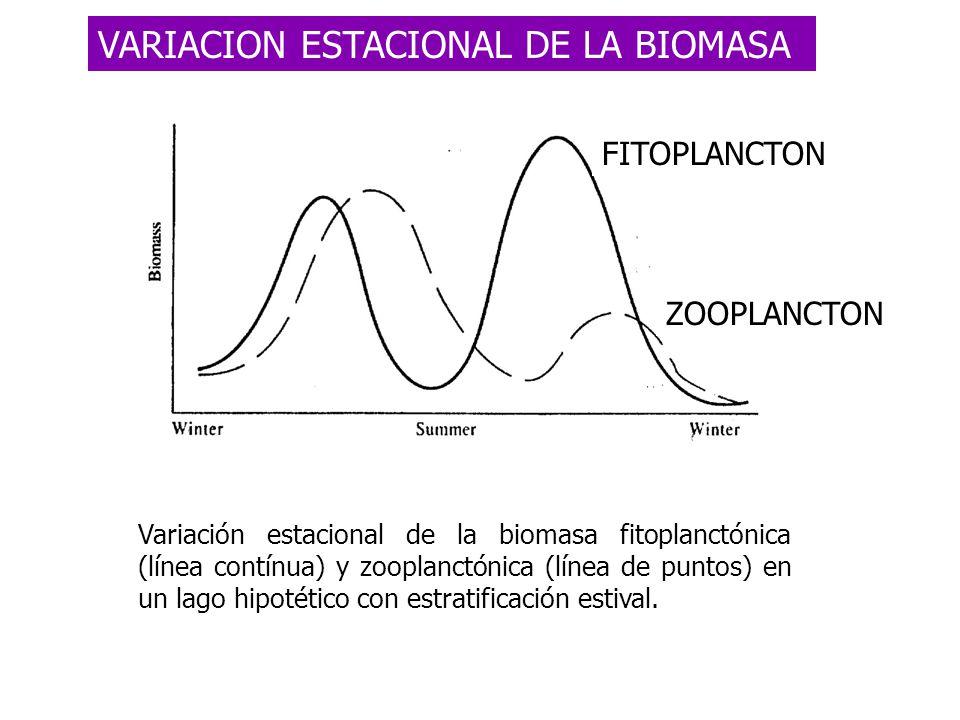VARIACION ESTACIONAL DE LA BIOMASA