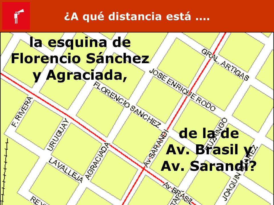 la esquina de Florencio Sánchez y Agraciada, de la de Av. Brasil y