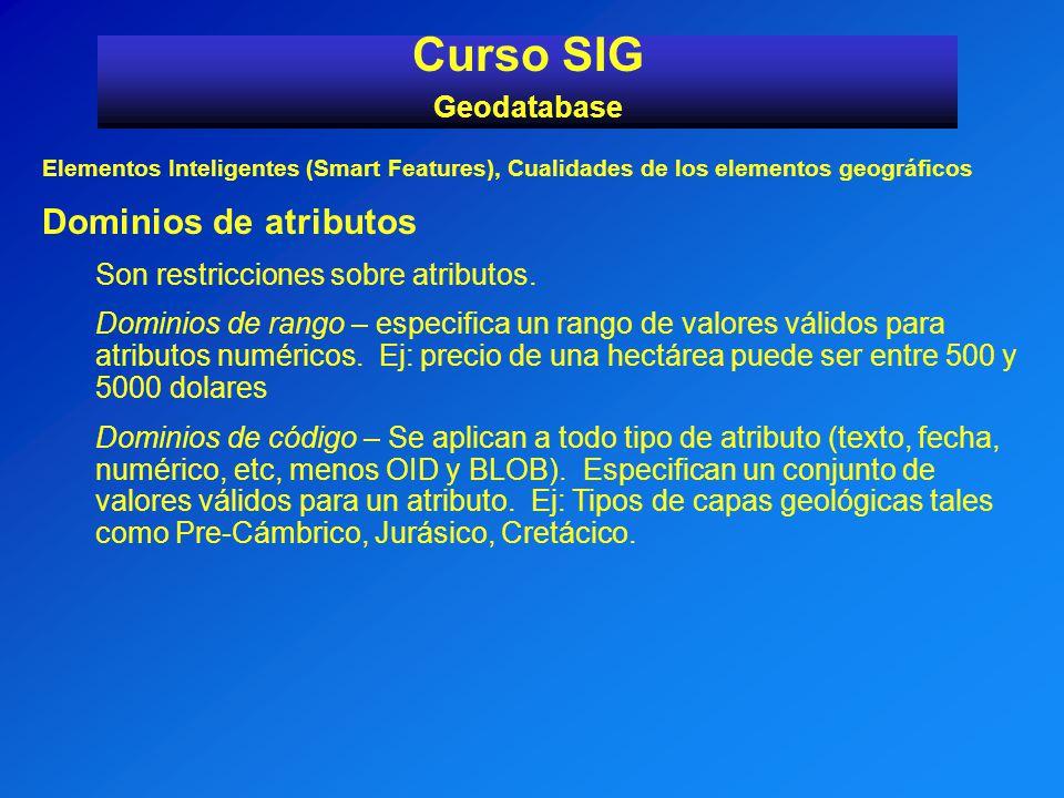 Curso SIG Dominios de atributos Geodatabase