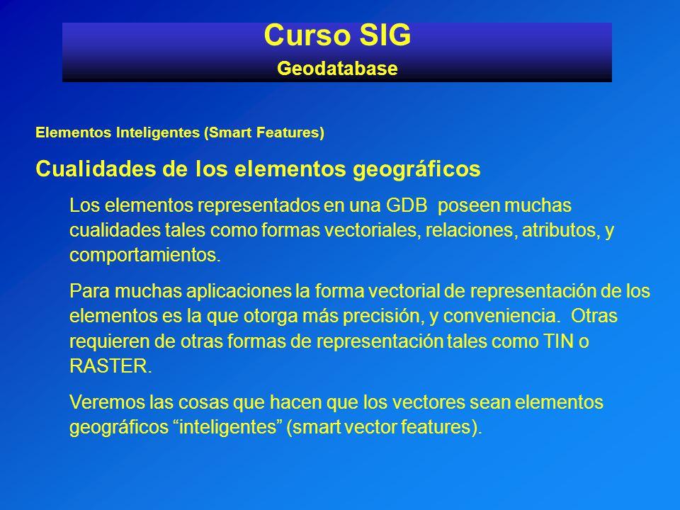 Curso SIG Cualidades de los elementos geográficos Geodatabase