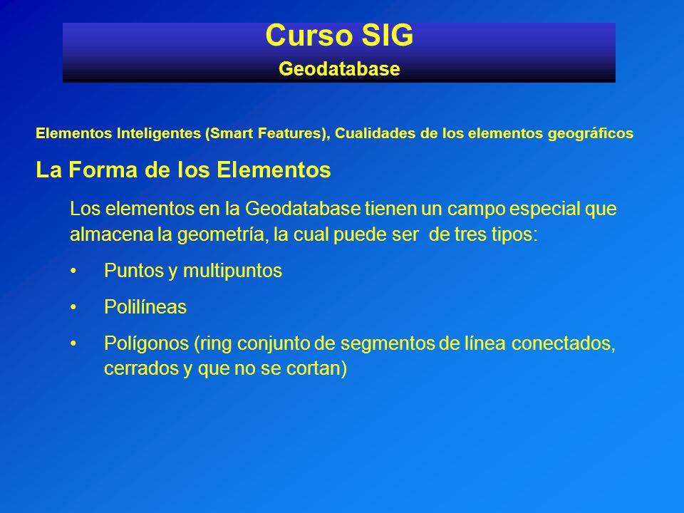 Curso SIG La Forma de los Elementos Geodatabase