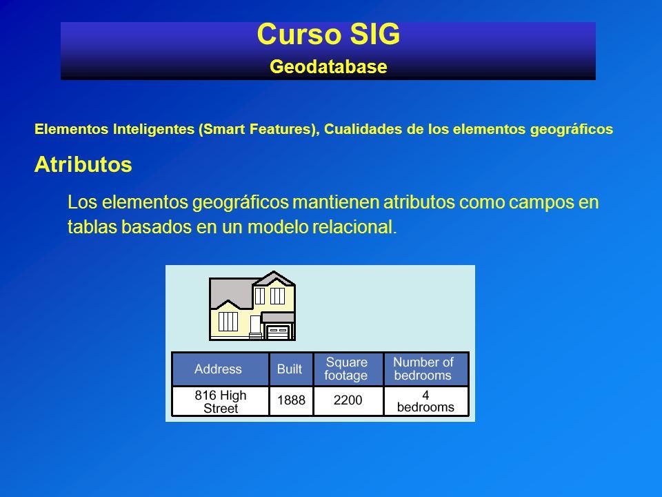 Curso SIG Atributos Geodatabase