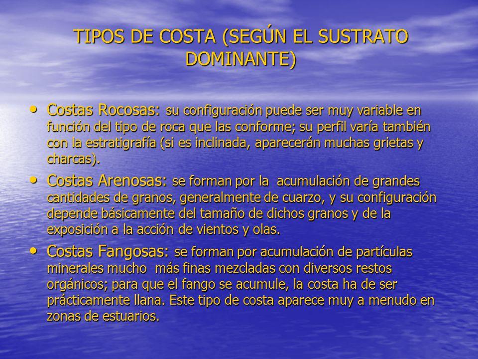 TIPOS DE COSTA (SEGÚN EL SUSTRATO DOMINANTE)