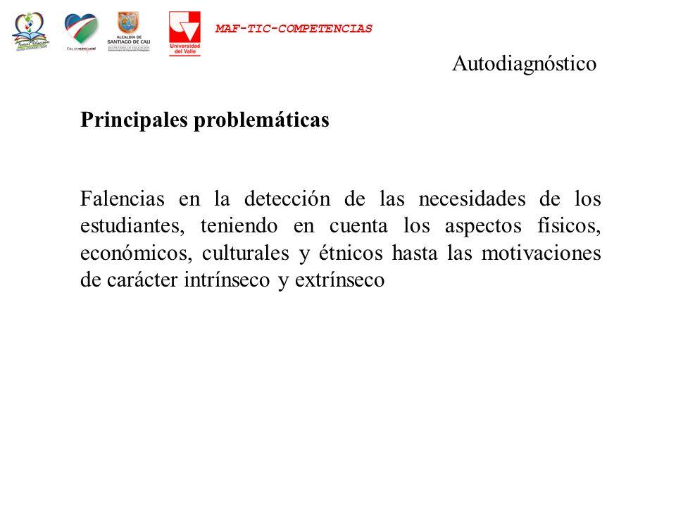 Autodiagnóstico Principales problemáticas.