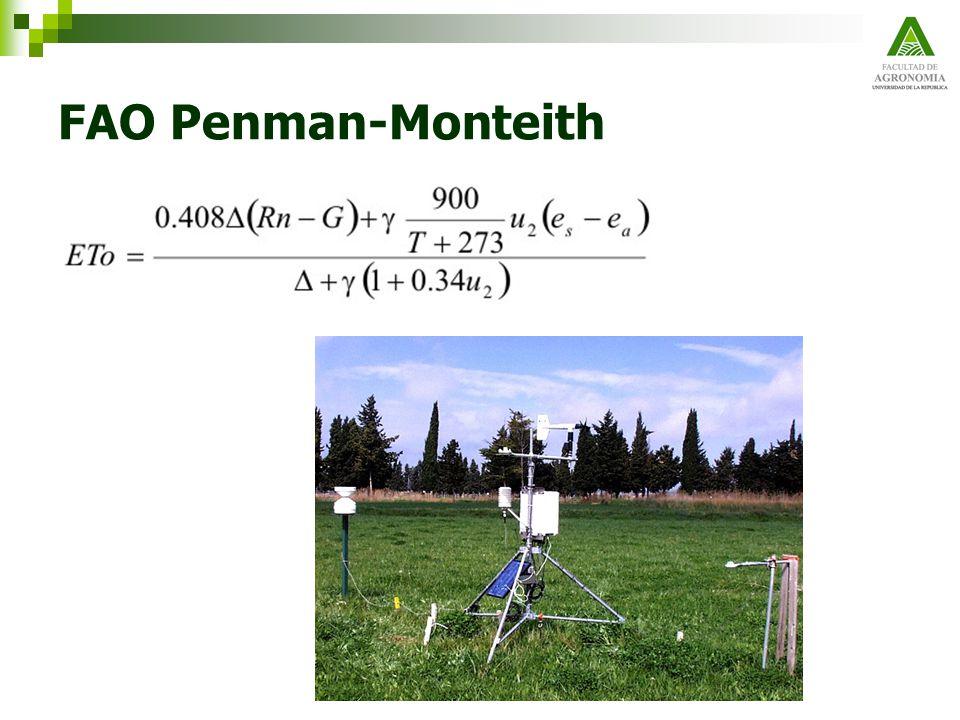 FAO Penman-Monteith