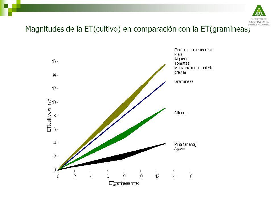 Magnitudes de la ET(cultivo) en comparación con la ET(gramíneas)