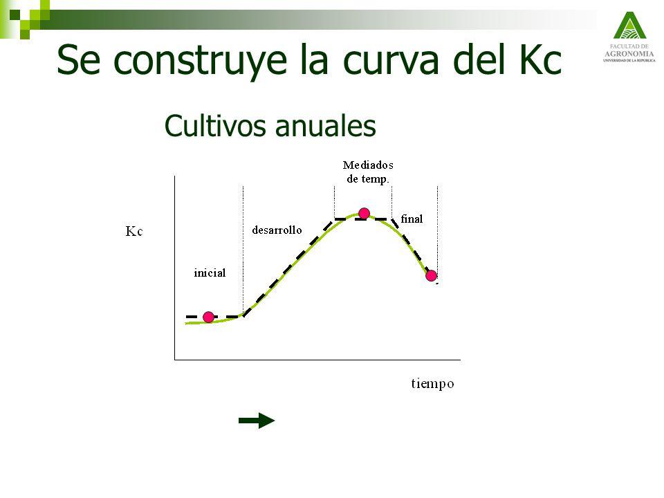 Se construye la curva del Kc