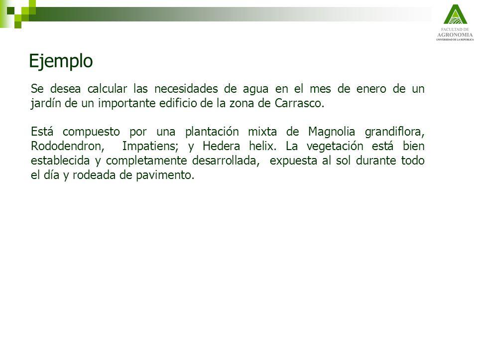 Ejemplo Se desea calcular las necesidades de agua en el mes de enero de un jardín de un importante edificio de la zona de Carrasco.