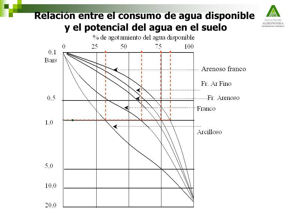 Relación entre el consumo de agua disponible y el potencial del agua en el suelo