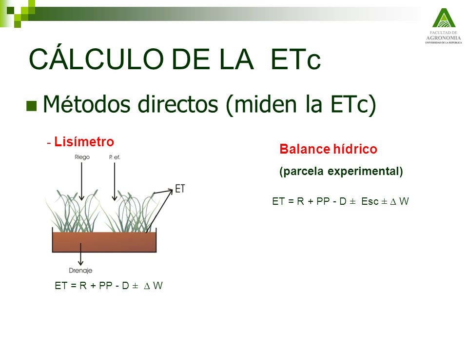CÁLCULO DE LA ETc Métodos directos (miden la ETc) - Lisímetro