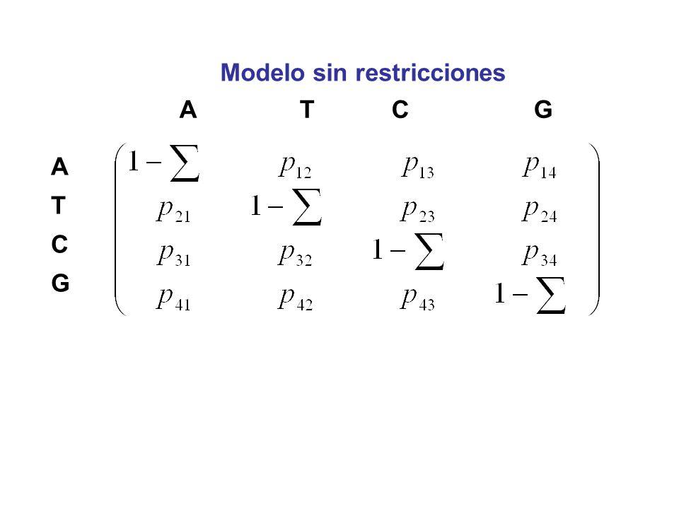 Modelo sin restricciones