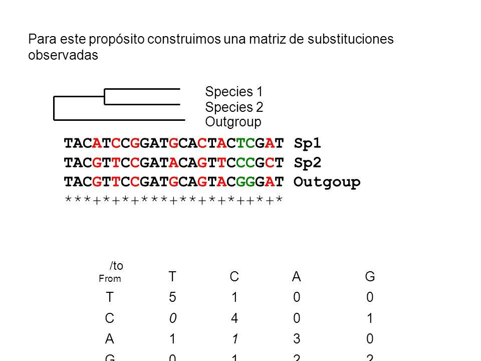 TACATCCGGATGCACTACTCGAT Sp1 TACGTTCCGATACAGTTCCCGCT Sp2