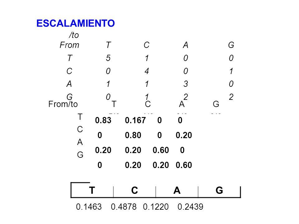 ESCALAMIENTO T C A G /to From T C A G 5 1 4 3 2 From/to T C A G 5/6
