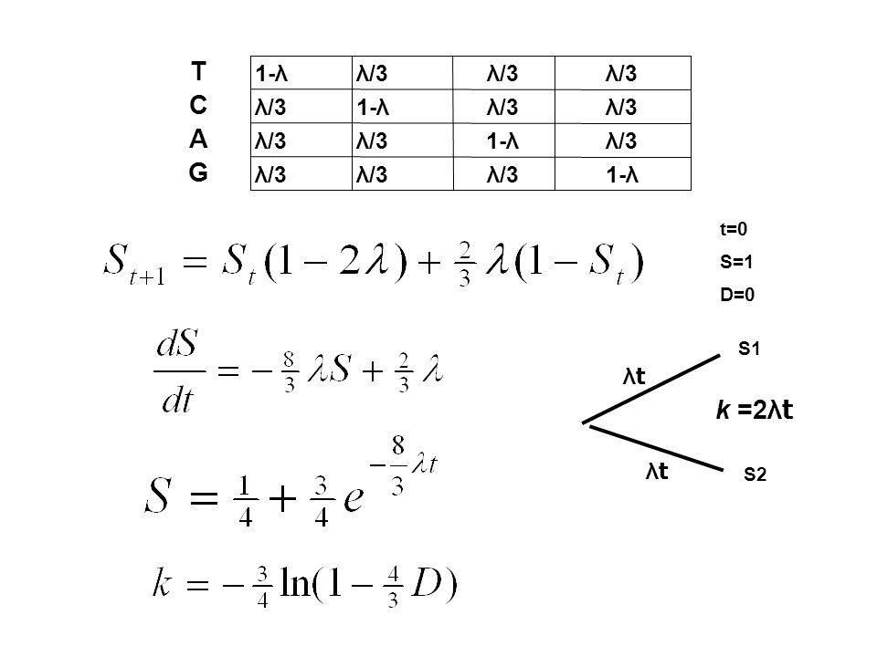 T C A G k =2λt 1-λ λ/3 λ/3 λ/3 λ/3 1-λ λ/3 λ/3 λ/3 λ/3 1-λ λ/3 λ/3 λ/3