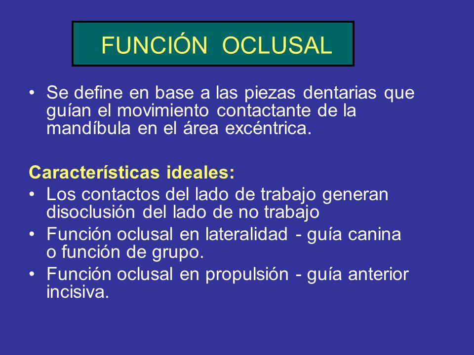 FUNCIÓN OCLUSAL Se define en base a las piezas dentarias que guían el movimiento contactante de la mandíbula en el área excéntrica.