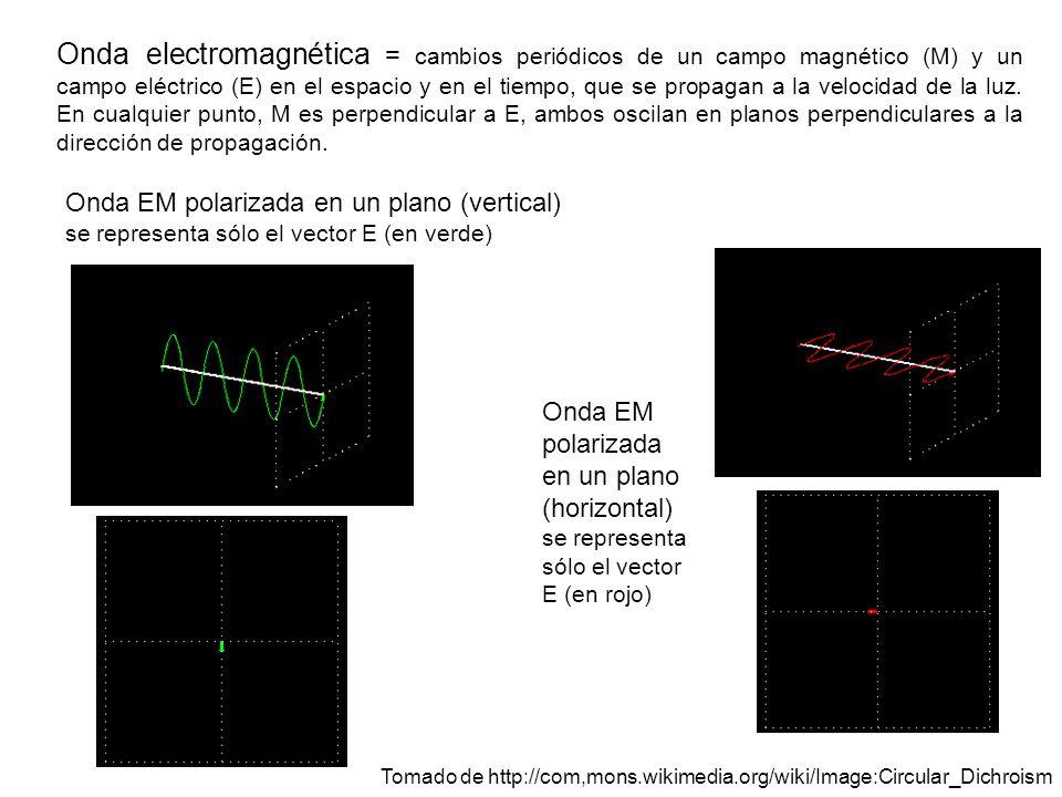 Onda electromagnética = cambios periódicos de un campo magnético (M) y un campo eléctrico (E) en el espacio y en el tiempo, que se propagan a la velocidad de la luz. En cualquier punto, M es perpendicular a E, ambos oscilan en planos perpendiculares a la dirección de propagación.