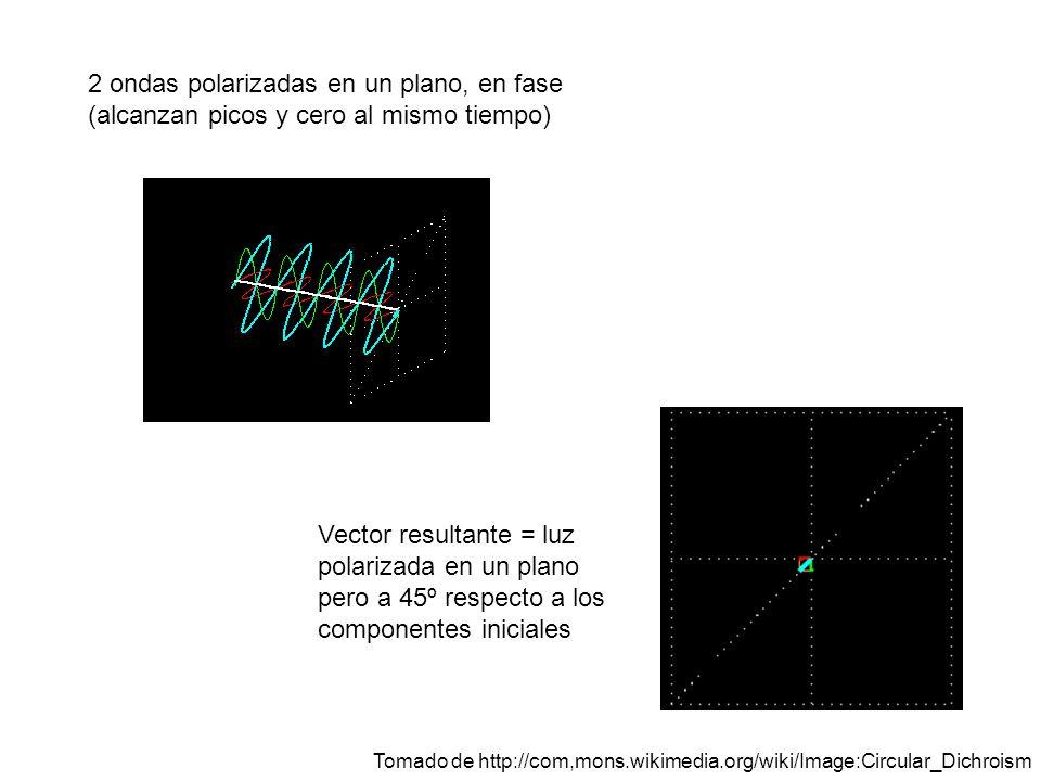 2 ondas polarizadas en un plano, en fase (alcanzan picos y cero al mismo tiempo)