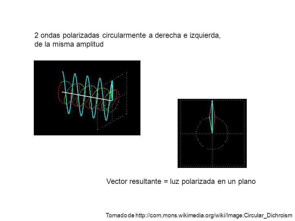 Vector resultante = luz polarizada en un plano