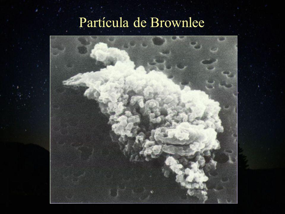 Partícula de Brownlee
