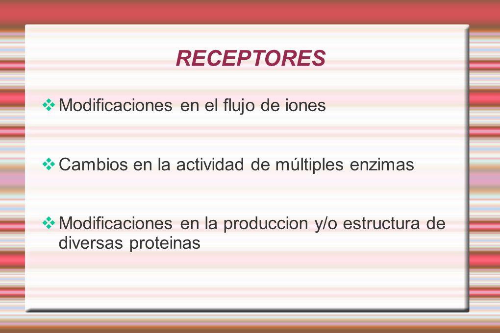 RECEPTORES Modificaciones en el flujo de iones