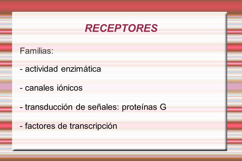 RECEPTORES Familias: - actividad enzimática - canales iónicos