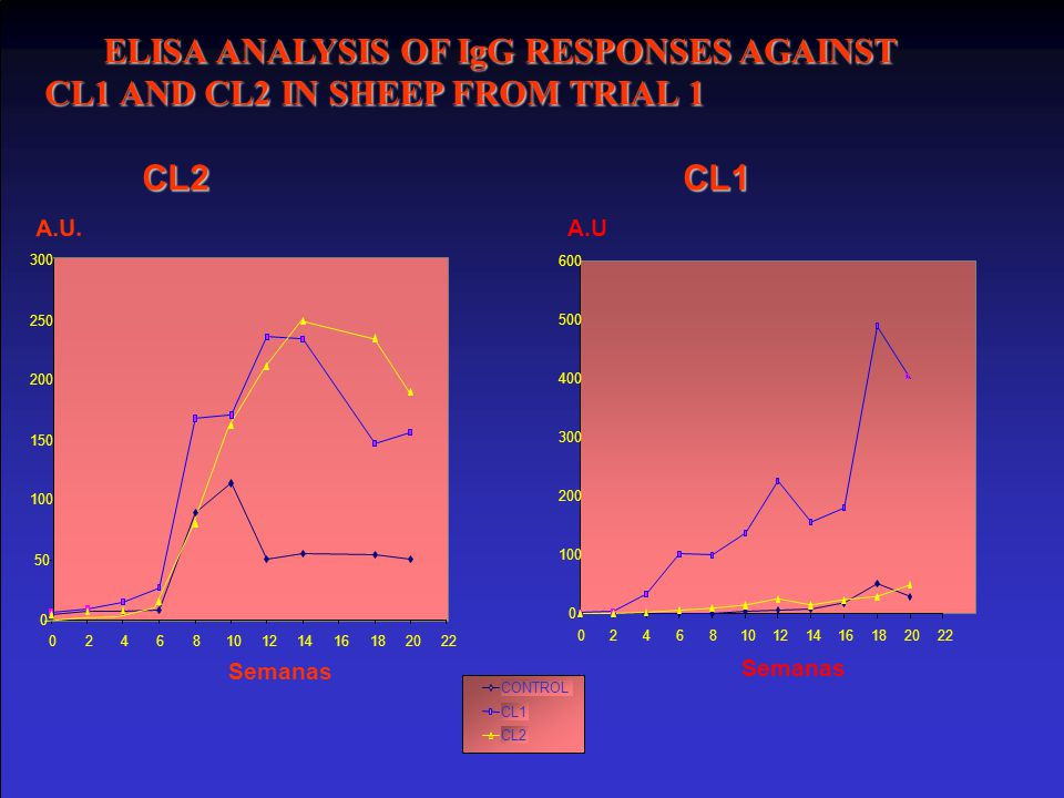 ELISA ANALYSIS OF IgG RESPONSES AGAINST