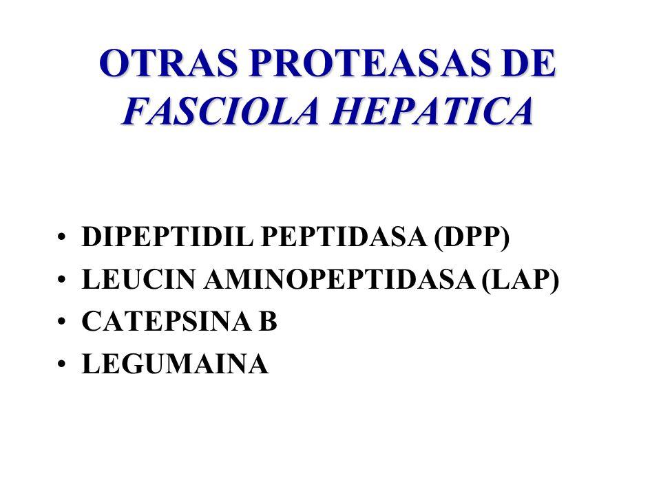 OTRAS PROTEASAS DE FASCIOLA HEPATICA