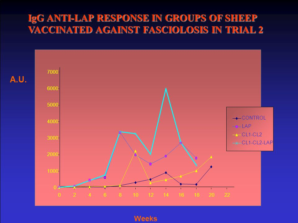 IgG ANTI-LAP RESPONSE IN GROUPS OF SHEEP VACCINATED AGAINST FASCIOLOSIS IN TRIAL 2